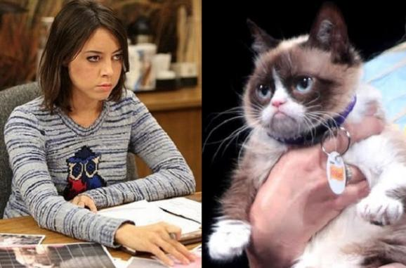 grumpy-cat-aubra-plaza-photo